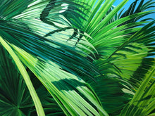 Atlantic Street Fan Palms