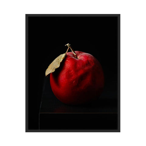 Aged Apple by Dustin Halleck for Artfully Walls
