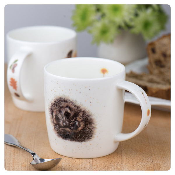'Prickle' Hedgehog - Fine Bone China Mug