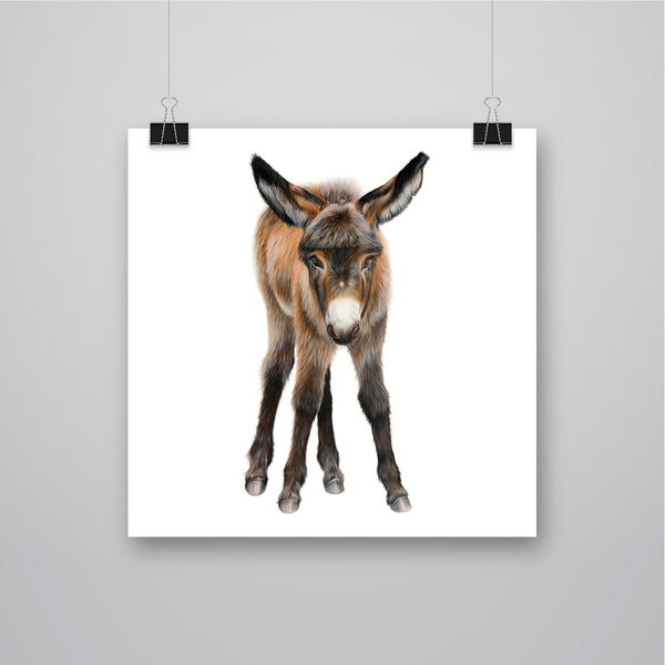 'Almond' Donkey Giclee Print - Harebell Designs