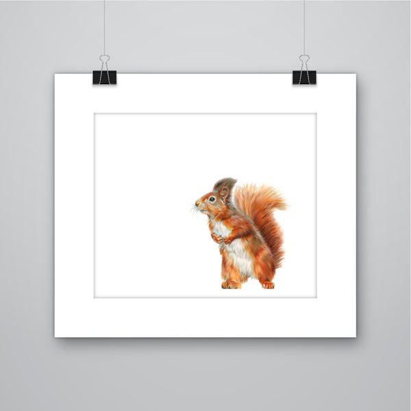 'Little Red' Red Squirrel - Harebell Designs
