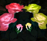 Garden Solar Rose Lights - 2 Pack