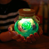 Rose Light Bottle LED Night Lamp - MAGICNIGHT
