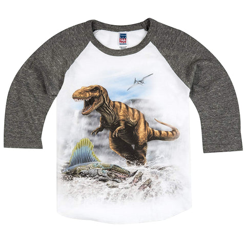 Shirts That Go Little Boys' T-Rex & Dimetrodon Dino Raglan T-Shirt