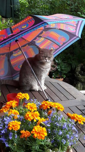 Rainbow Cat Cousins Umbrella Umbrellas Sun'N'Sand - Laurel Burch Studios