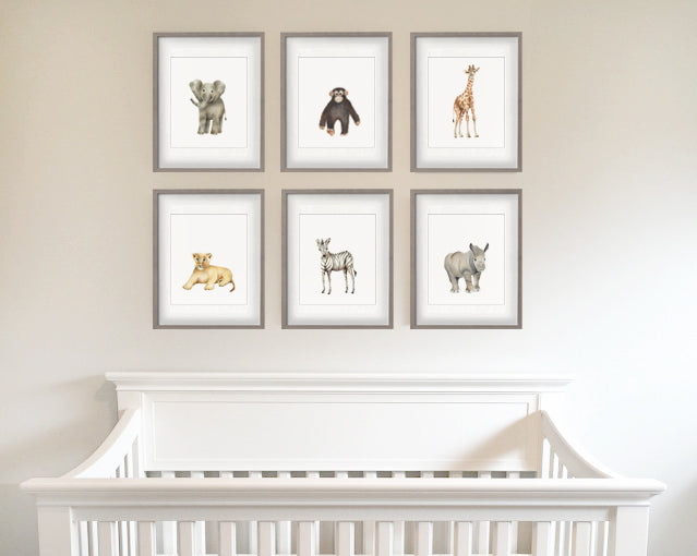 Set of 6 safari animal prints by Studio Q - Art by Nicky Quartermaine Scott