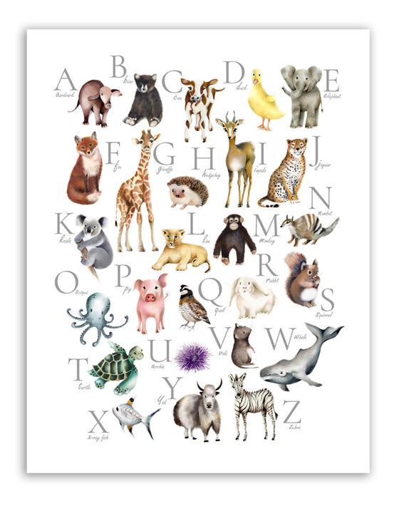 Animal Alphabet Print - Studio Q - Art by Nicky Quartermaine Scott