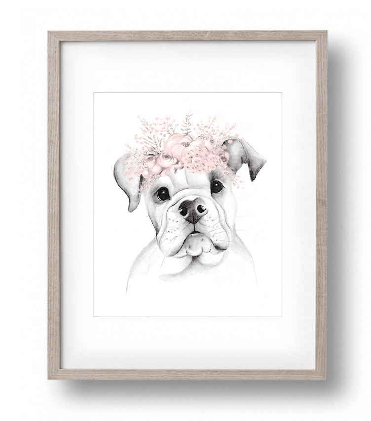 American Bulldog with Flower Crown Sketch - Studio Q - Art by Nicky Quartermaine Scott