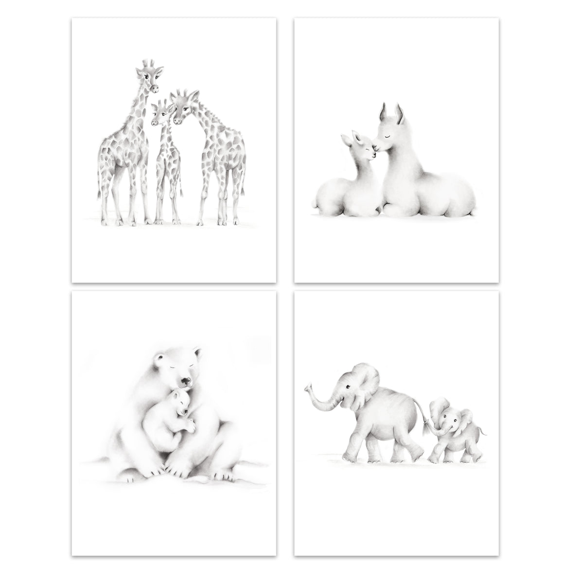 Animal Families Sketch Prints - Set of 4 - Studio Q - Art by Nicky Quartermaine Scott