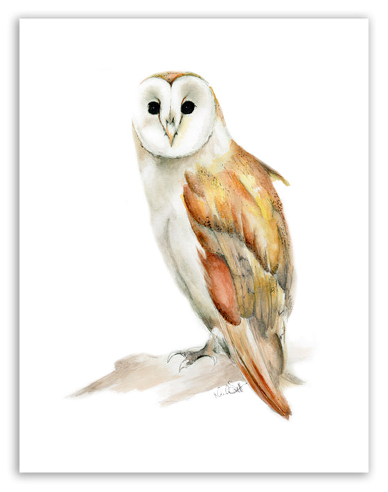 Barn Owl Print - Studio Q  - Art by Nicky Quartermaine Scott