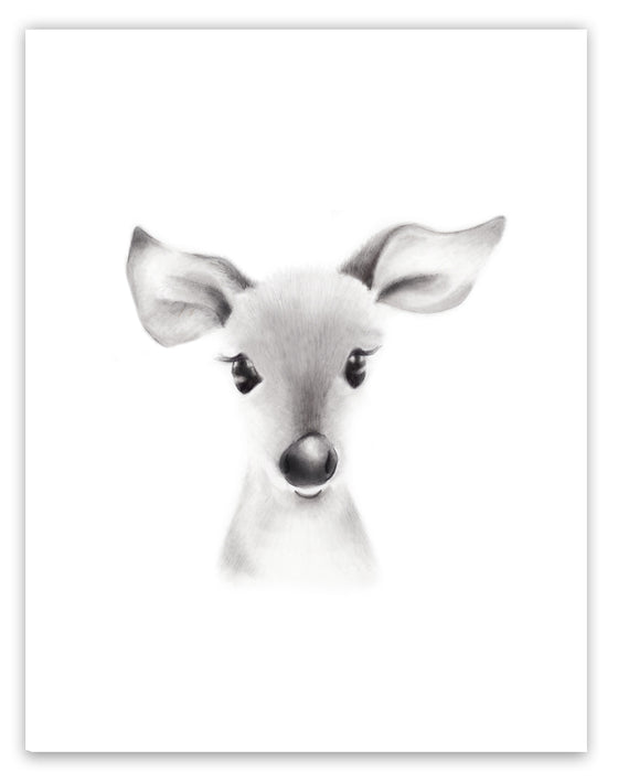 Deer Sketch Fluffy Face Print - Studio Q - Art by Nicky Quartermaine Scott