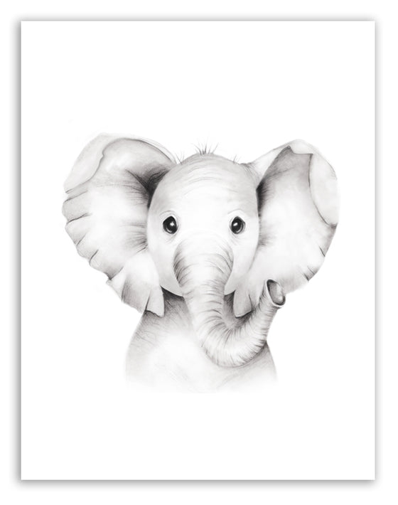 Elephant Sketch Fluffy Face Print - Studio Q - Art by Nicky Quartermaine Scott