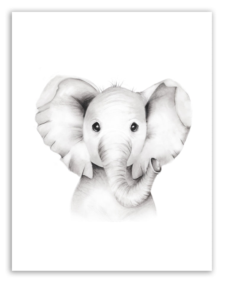 Elephant Sketch Art - Fluffy Face Print