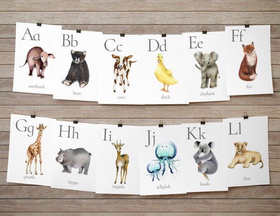 Animal Alphabet Flashcards - Studio Q - Art by Nicky Quartermaine Scott