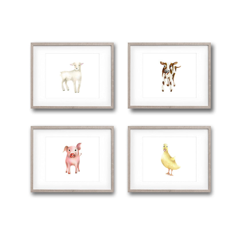 Baby Lamb Art Print 1 - Studio Q - Art by Nicky Quartermaine Scott