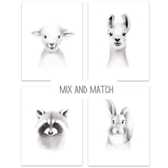 Baby Animal Sketch Prints - Set of 4 - Studio Q - Art by Nicky Quartermaine Scott