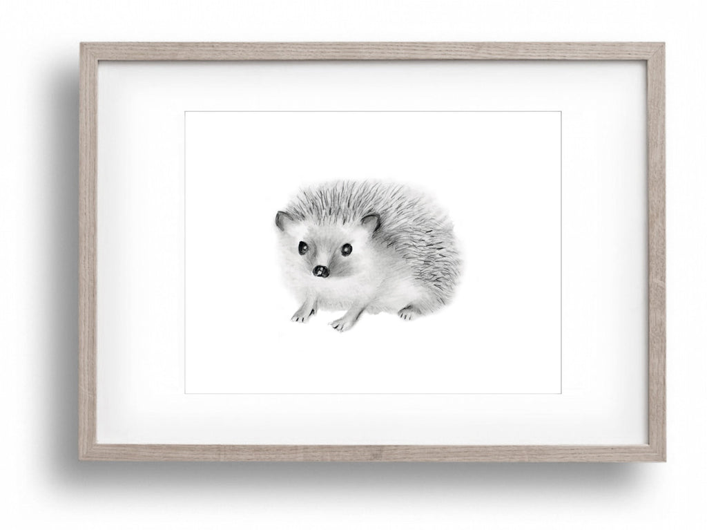 Hedgehog Nursery Art Print - Studio Q - Art by Nicky Quartermaine Scott