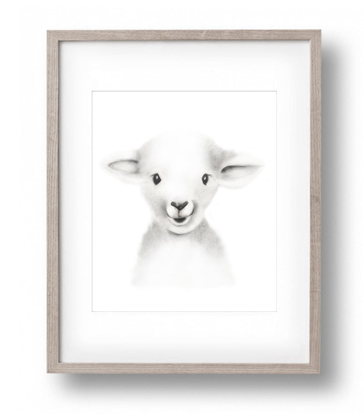 Lamb Sketch Fluffy Face Print - Studio Q - Art by Nicky Quartermaine Scott
