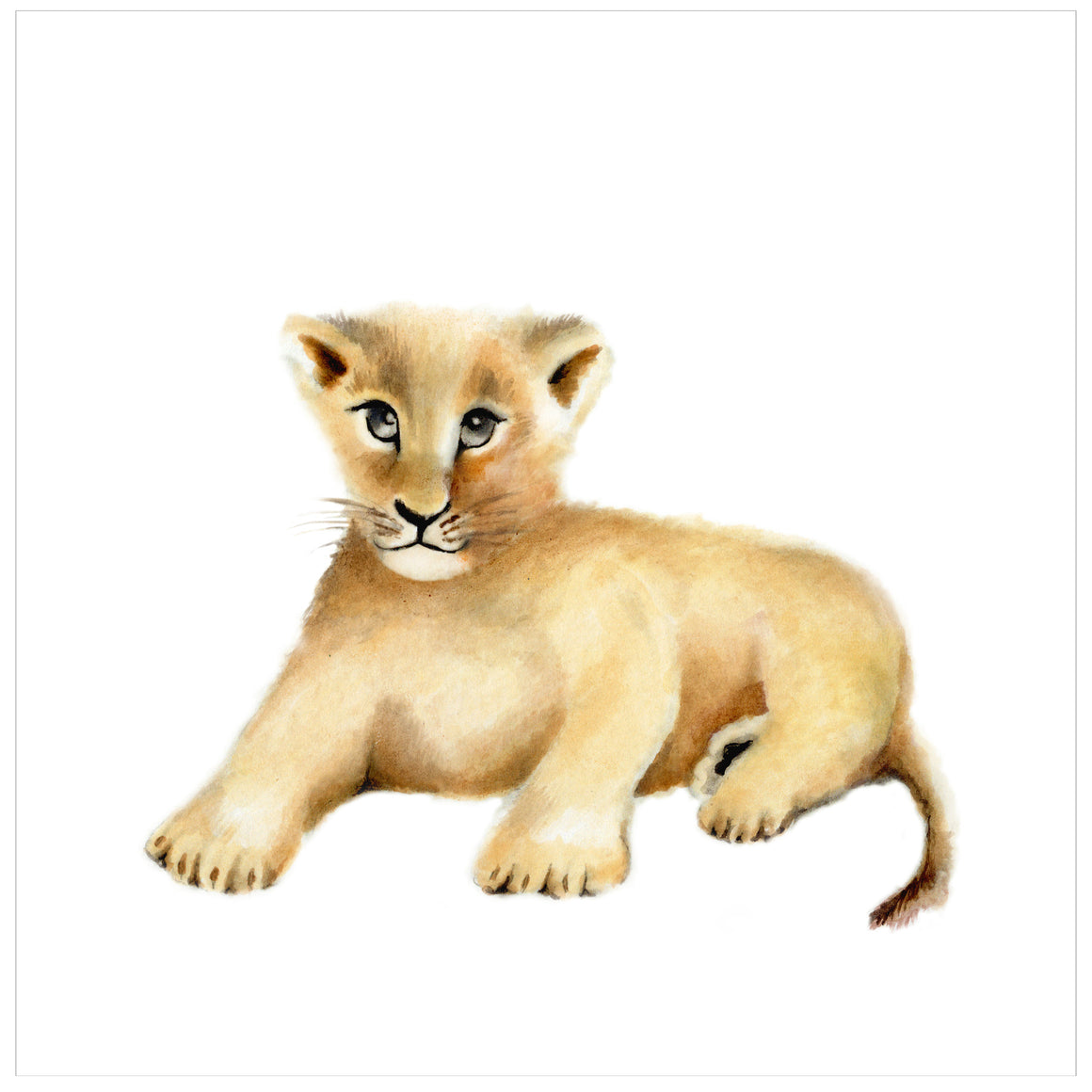 Lion Cub Nursery Art Print - Studio Q - Art by Nicky Quartermaine Scott