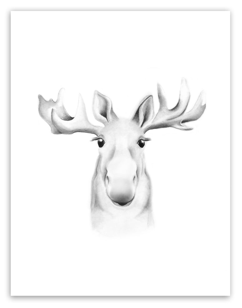 Moose Sketch Fluffy Face Print - Studio Q - Art by Nicky Quartermaine Scott