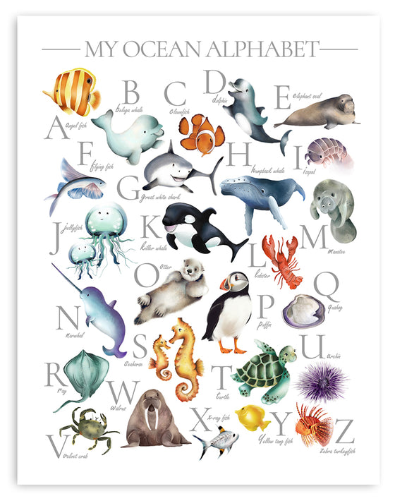 Ocean Alphabet Print - Studio Q - Art by Nicky Quartermaine Scott