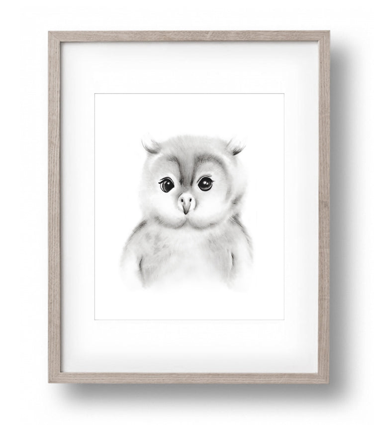 Baby Owl Sketch Fluffy Face Print - Studio Q - Art by Nicky Quartermaine Scott