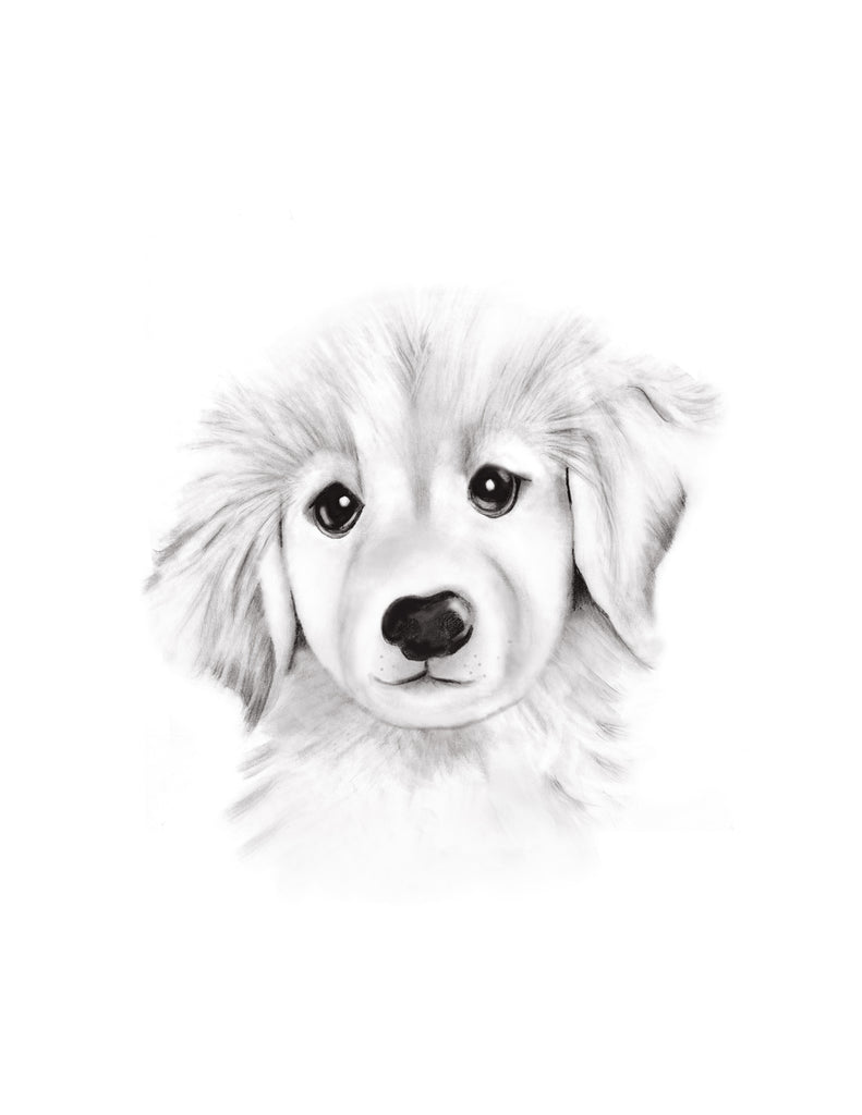 Puppy Sketch Fluffy Face Print - Studio Q - Art by Nicky Quartermaine Scott