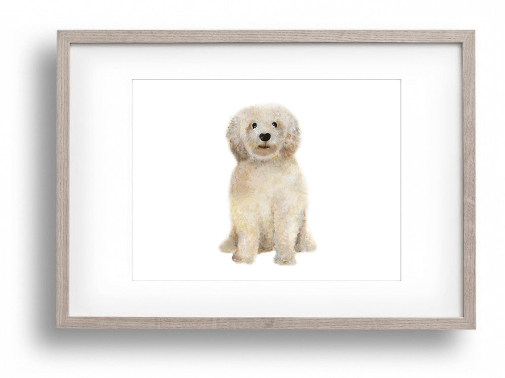 Goldendoodle Art Print - Studio Q - Art by Nicky Quartermaine Scott