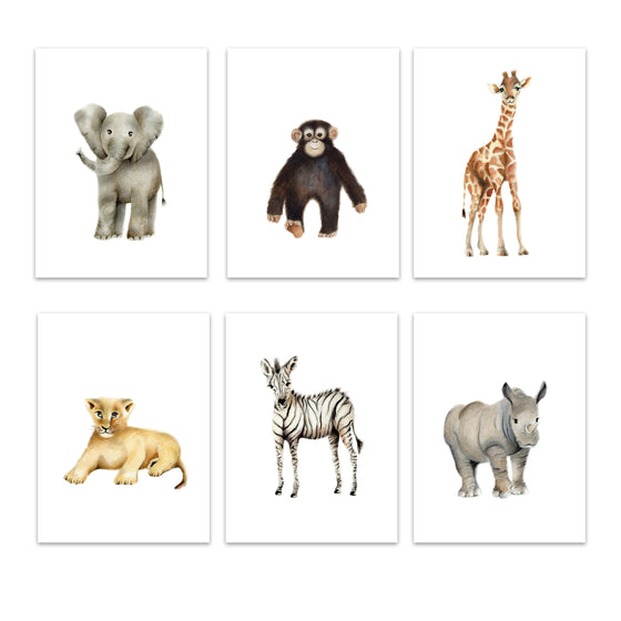 Safari Baby Animal Prints Set 6 - Color - Studio Q - Art by Nicky Quartermaine Scott