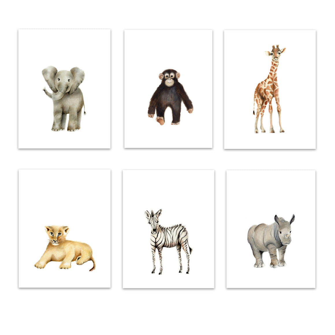 Set of 6 safari animal art prints