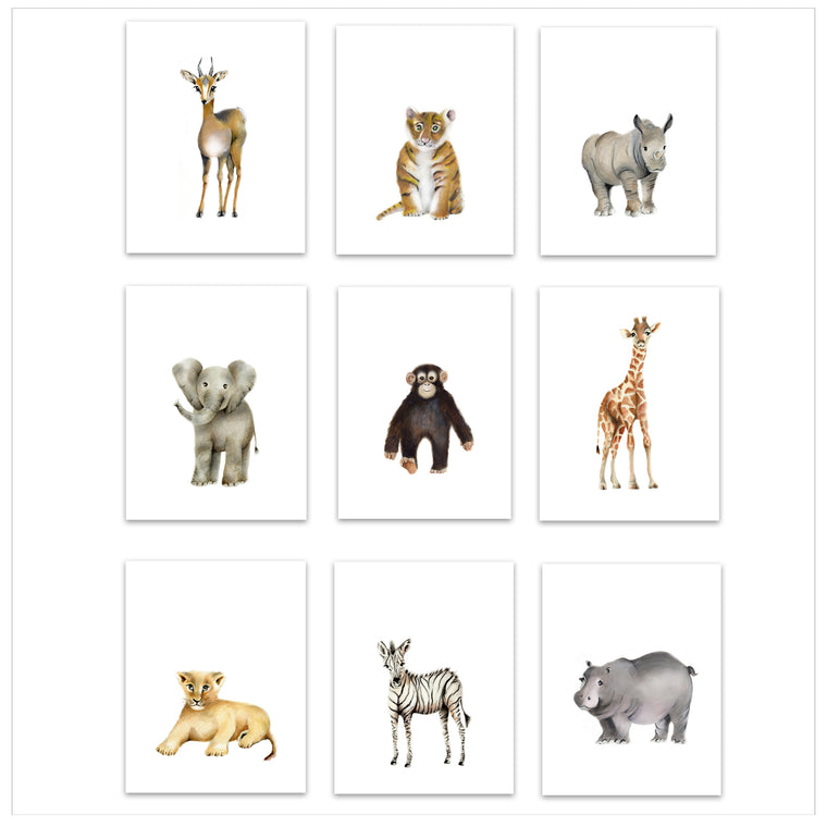 Safari Animal Prints Set of 9