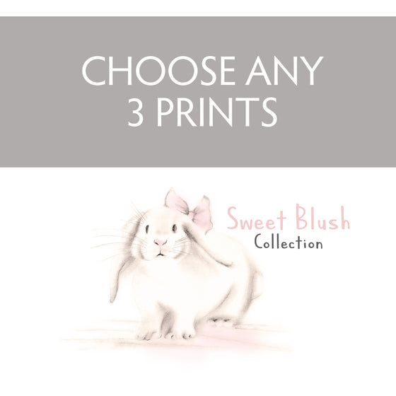 Sweet Blush Collection - Choose any 3 Prints - Studio Q - Art by Nicky Quartermaine Scott