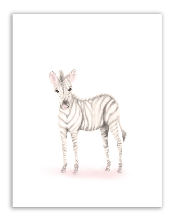 Zebra Nursery Art Print - Sweet Blush - Studio Q - Art by Nicky Quartermaine Scott