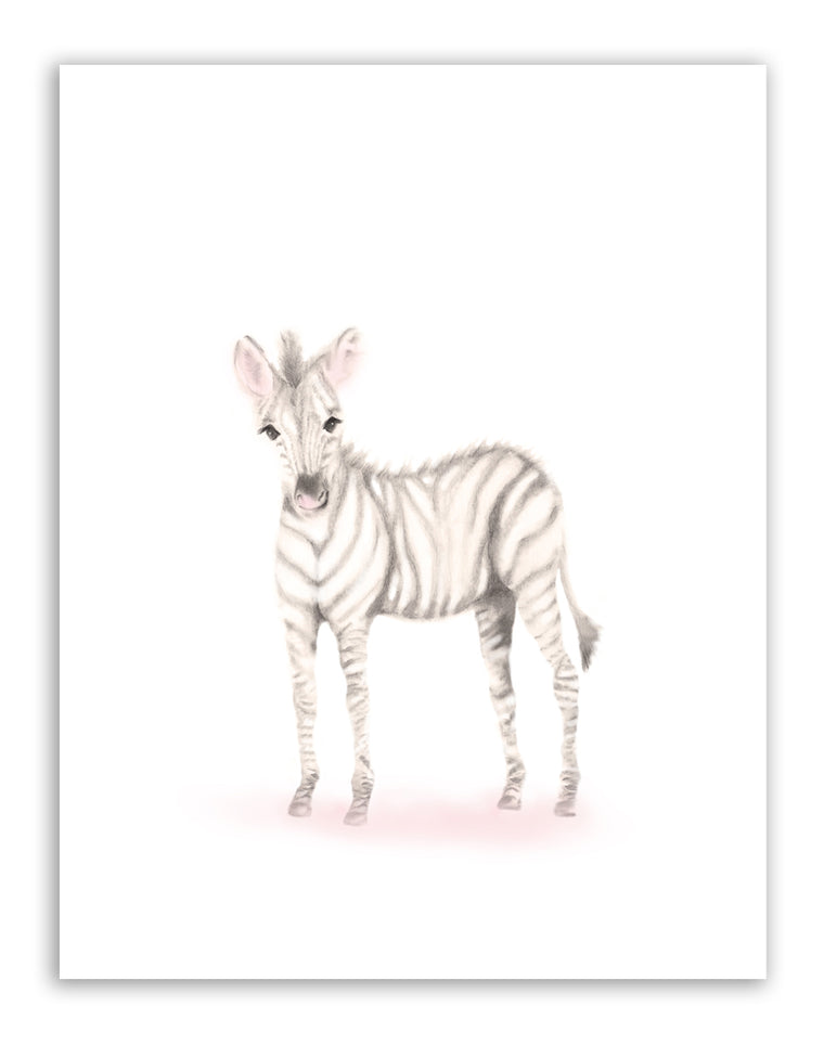 Zebra Nursery Art Print - Sweet Blush