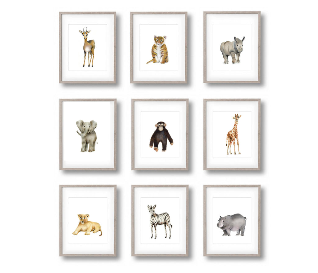 Safari Nursery Art Set of 9 Prints - Studio Q - Art by Nicky Quartermaine Scott