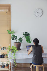 Woman working at home desk surrounded by plants
