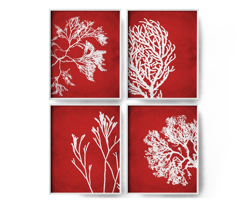 4 Set Coral Art Prints - Loftipop