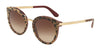 DOLCE & GABBANA DG4268F Round Sunglasses  315513-LEO ON BORDEAUX 52-22-140 - Color Map black