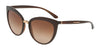 DOLCE & GABBANA DG6113 Cat Eye Sunglasses  315913-TRANSPARENT BROWN 55-18-140 - Color Map brown