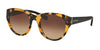 Coach HC8167 Cat Eye Sunglasses  535913-HONEY MOSAIC/BLACK 52-22-135 - Color Map havana