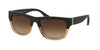Coach HC8174Q Rectangle Sunglasses  538013-BLACK CRYSTAL LT BROWN/BLACK 53-18-140 - Color Map brown