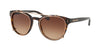 Coach L1652 HC8216 Phantos Sunglasses  512013-DARK TORTOISE 51-19-135 - Color Map havana