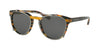 Coach L1652 HC8216 Phantos Sunglasses  544087-BLK AMBER GLTR VARSITY STRIPE 51-19-135 - Color Map amber