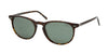 Polo PH3044 PH4044 Phantos Sunglasses  500371-HAVANA 52-19-145 - Color Map havana