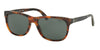 Polo PH4116 Square Sunglasses  501771-SHINY JERRY TORTOISE 58-18-145 - Color Map tortoise
