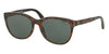 Polo PH4117 Butterfly Sunglasses  562671-SHINY NEW RED HAVANA 56-17-145 - Color Map havana