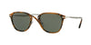 Persol PO3165S Square Sunglasses  107331-TORTOISE DARK BROWN 50-22-145 - Color Map havana