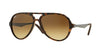 Ray-Ban RB4235 Pilot Sunglasses  894/85-MATTE HAVANA 57-14-135 - Color Map havana