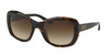 Ralph Lauren RL8132 Square Sunglasses  500313-DARK HAVANA 55-21-140 - Color Map havana