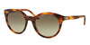 Ralph Lauren RL8138 Butterfly Sunglasses  50078E-STRIPED HAVANA 54-22-140 - Color Map havana